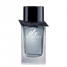Burberry Mr. Burberry Indigo Eau de Toilette Spray 100 ml