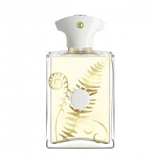 Amouage Bracken Eau de Parfum Spray 100 ml